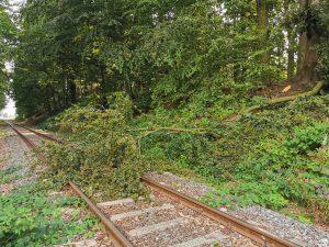 Hilfeleistung - Baum im Gleisbereich - Freiwillige Feuerwehr Osterholz-Scharmbeck